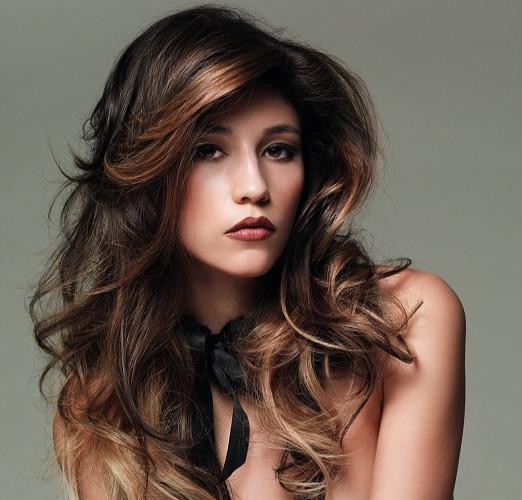 Brunette hair highlights pmusecretfo Choice Image